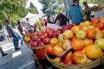 Market renews focus on farms
